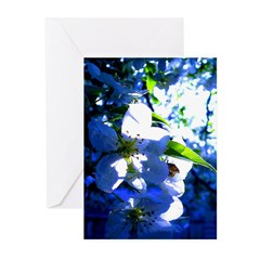 Apple Blossom Blues Greeting Cards (Pk of 10)