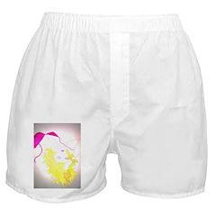 Golden Gal Boxer Shorts