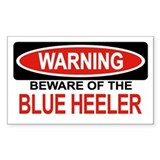 Blue heeler Single
