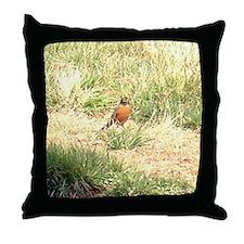 robin Throw Pillow