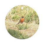 robin Ornament (Round)