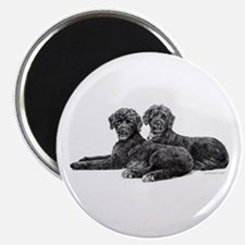 Portuguese Water Dogs Magnet