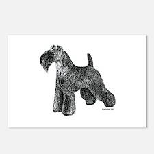 Kerry Blue Terrier Postcards (Package of 8)