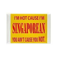 I'm Hot Cause i'm Singaporean Rectangle Magnet