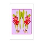 ORCHIDS Poster Print