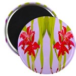 ORCHIDS Magnets