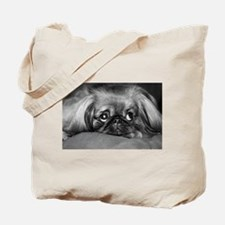 Boo, Bo, and Taz 0201.jpg Tote Bag