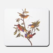 Painted Bunting Birds in Wild Olive Tree Mousepad