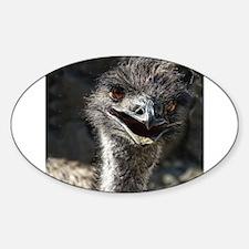 Helaine's Emu Decal