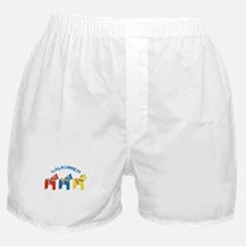 Dala Valkommen Horses Boxer Shorts