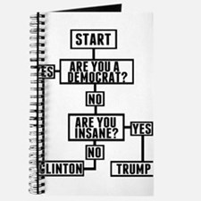 Funny Election Flow Chart Journal