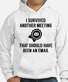 I Survived Another Meeting Hoodie