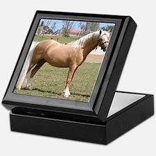 Cute Baby horse Keepsake Box
