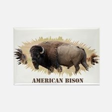 American Bison Magnets
