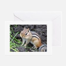 Cheeky Chipmunk Greeting Cards