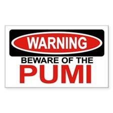 PUMI Rectangle Decal