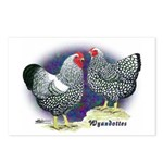 Silver Wyandotte Chickens Postcards (Package of 8)