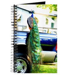 Peacock on a Pickup Journal