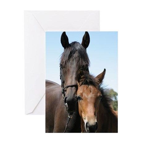 marefoal2 Greeting Cards