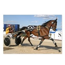 Standardbred horse Postcards (Package of 8)