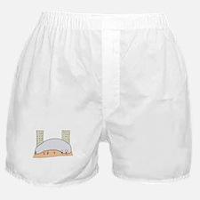Chicago Bean Boxer Shorts