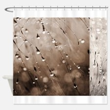 Brown Abstract Grass Dew Water Drop Shower Curtain