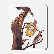 Gold-Winged Woodpecker Vintage Audubon Mousepad