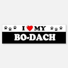 BO-DACH Bumper Bumper Bumper Sticker