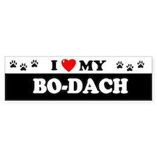 BO-DACH Bumper Bumper Sticker