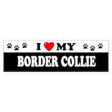 BORDER COLLIE Bumper Car Sticker