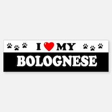 BOLOGNESE Bumper Car Car Sticker