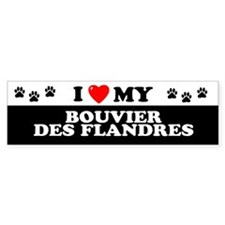 BOUVIER DES FLANDRES Bumper Bumper Sticker