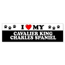 CAVALIER KING CHARLES SPANIEL Bumper Car Sticker