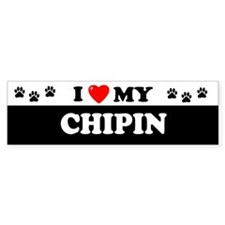 CHIPIN Bumper Bumper Sticker