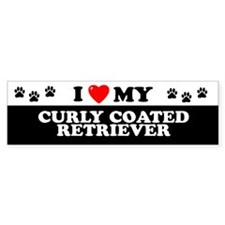 CURLY COATED RETRIEVER Bumper Car Sticker