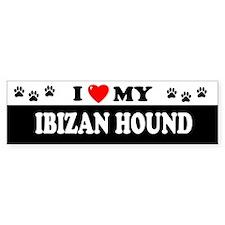 IBIZAN HOUND Bumper Bumper Sticker