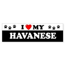 HAVANESE Bumper Bumper Sticker