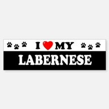 LABERNESE Bumper Bumper Bumper Sticker
