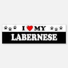 LABERNESE Bumper Bumper Bumper Sticker