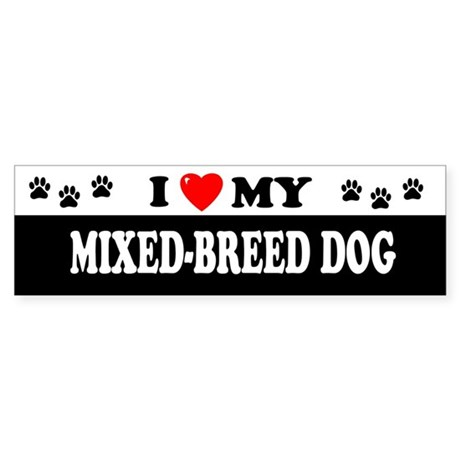MIXED-BREED DOG Bumper Sticker