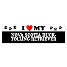 NOVA SCOTIA DUCK-TOLLING RETRIEVER Bumper Sticker