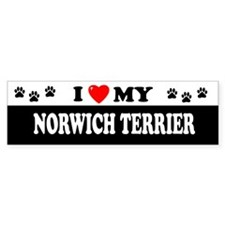 NORWICH TERRIER Bumper Bumper Sticker