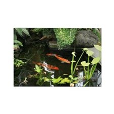 Serene Koi Pond Rectangle Magnet