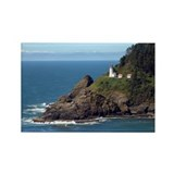 Heceta head 10 Pack