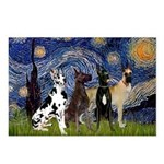 Starry / 4 Great Danes Postcards (Package of 8)