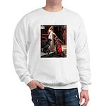 Accolade / Gr Dane (bl) Sweatshirt