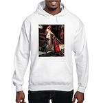 Accolade / Gr Dane (bl) Hooded Sweatshirt