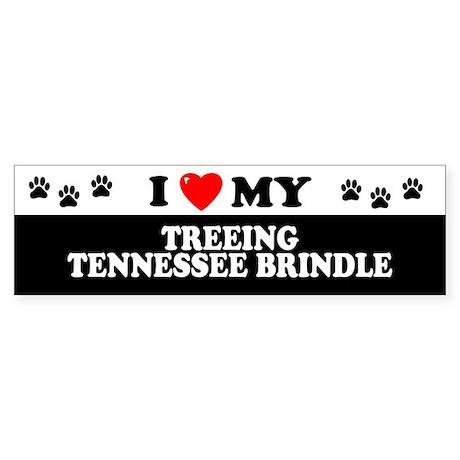 TREEING TENNESSEE BRINDLE Bumper Sticker