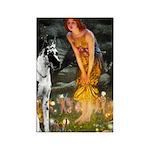 Fairies / Gr Dane (h) Rectangle Magnet (10 pack)