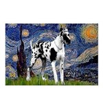 Starry / Gr Dane (h) Postcards (Package of 8)